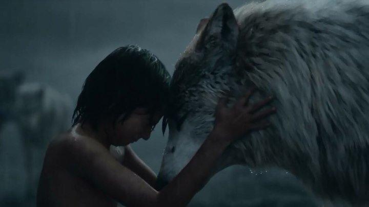 """Маугли покидает стаю. Смотрите отрывок из фильма """"Книга джунглей""""!"""