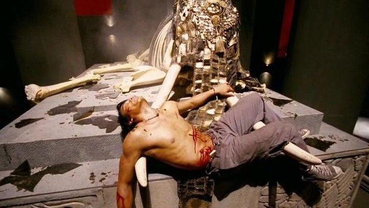 Честь дракона (2005) смотреть онлайн (боевик, триллер, драма, криминал)