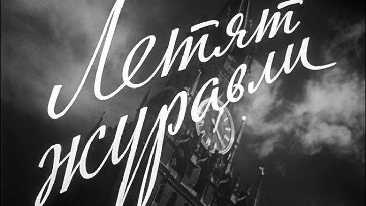 Летят журавли - (Драма,Мелодрама,Военный) 1957 г СССР