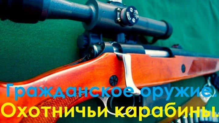 Гражданское оружие. Охотничьи карабины