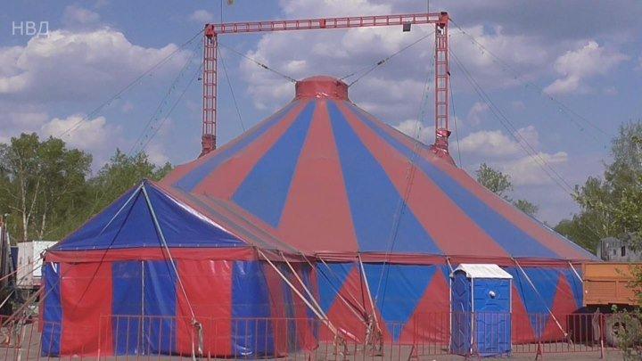 Не все дома. Администрация Вичуги прогнала Цирк.