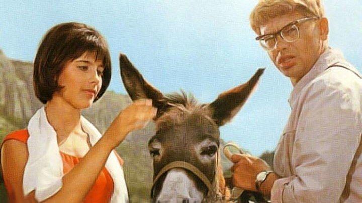 Кавказская пленница, или новые приключения Шурика 1967 комедия.