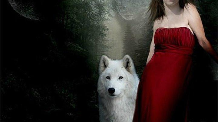 """""""Волки тм"""" рекомендует к просмотру - Волк одиночка,альфа самец и лучший охотник."""