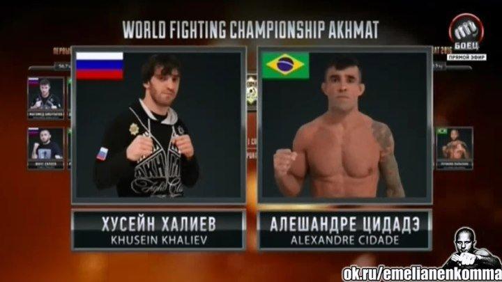 Хусейн Халиев vs. Алишандре Цидадэ. WFCA. Grand Prix Akhmat 2016
