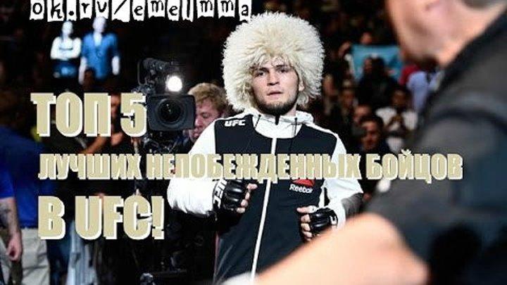 ★ ТОП 5 ЛУЧШИХ НЕПОБЕЖДЕННЫХ БОЙЦОВ В UFC ★