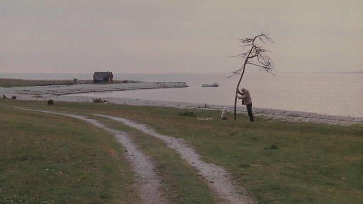 Жертвоприношение(1986)...А.Тарковский
