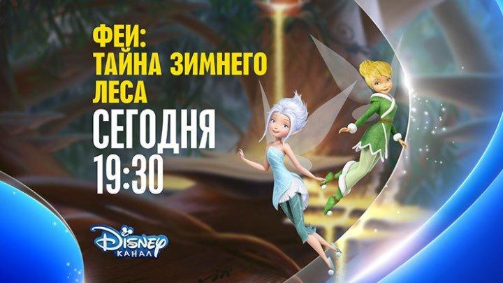 """""""Феи: Тайна зимнего леса"""" на Канале Disney!"""