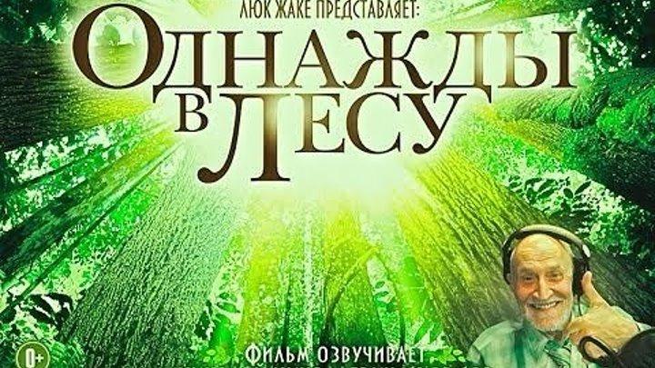 Однажды в лесу / Once Upon a Forest / Il etait une foret (2013 ᴴᴰ) Документальный HD