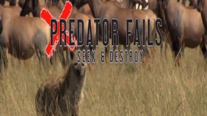 неудачи хищников (3 серия)