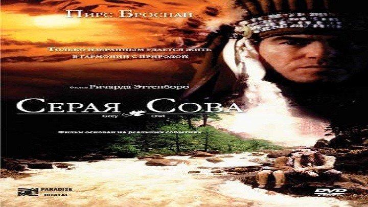Серая сова.1999.WEB-DL.720p.