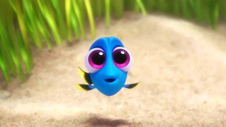 """Хотите увидеть что-то невероятно трогательное? Тогда скорее смотрите этот отрывок из анимационного фильма Disney/Piхаr """"В поисках Дори""""!"""