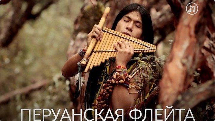 Шикарная музыка! -Leo Rojas - El Condor Pasa