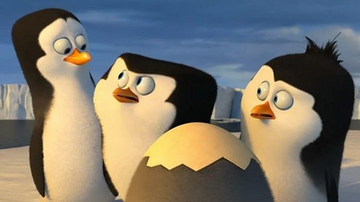 Пингвины Мадагаскара (2014) классный мультфильм смотреть онлайн