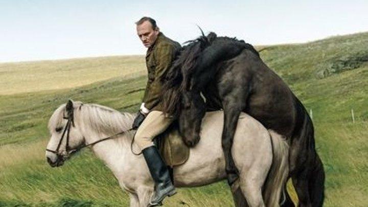 О лошадях и людях