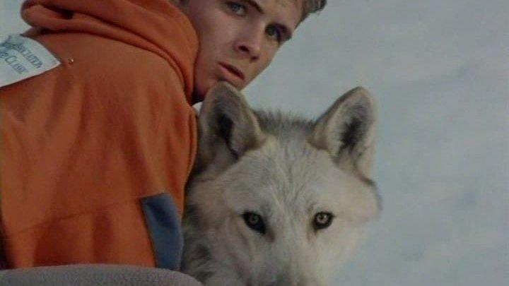Серебряный волк.(1999).