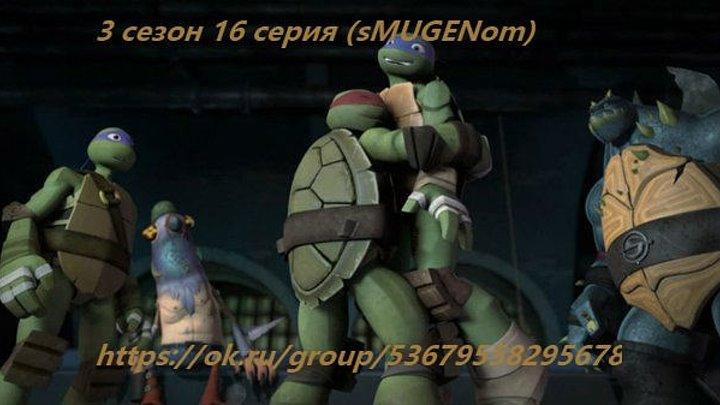 Черепашки Ниндзя 3 сезон 16 серия (MUG)