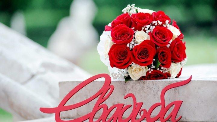 Свадьба-2017/Wedding Day/Творческая интернет-студия PinkFrog/Слайд-шоу на заказ/Видеомонтаж/Коллажи