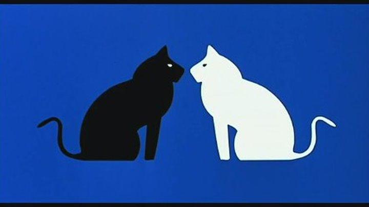 """"""" Чёрная кошка , белый кот """" ( шедевр мировой комедии ) 1998 г ."""