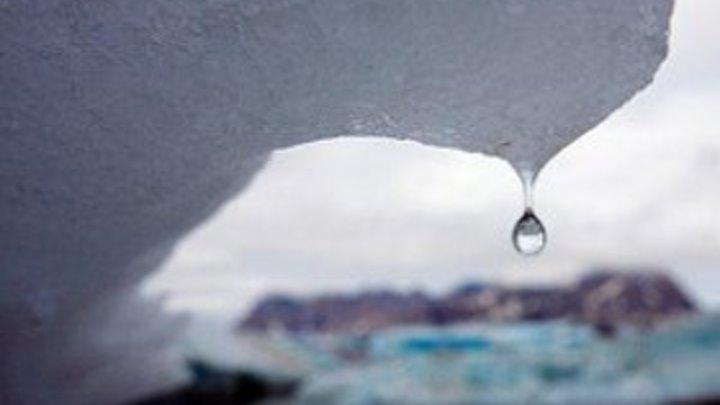 """""""Болезни"""" глобального потепления: к чему готовиться и как?"""