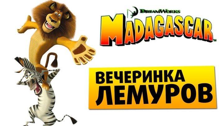 Мадагаскар --- вечеринка лемуров ч.3