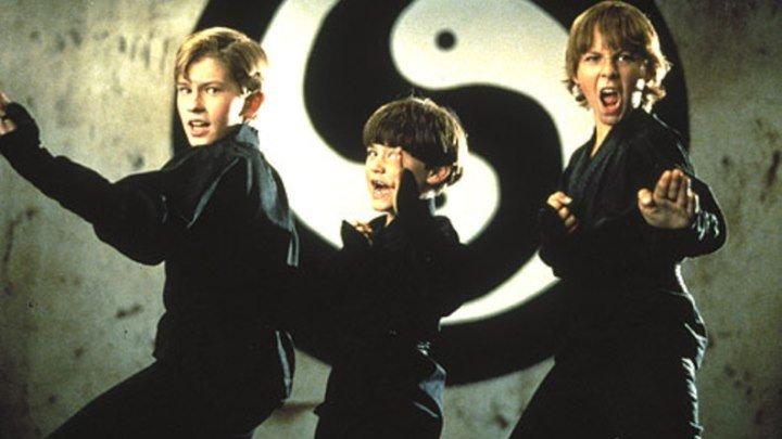 Три ниндзя (комедийный боевик) | США, 1992