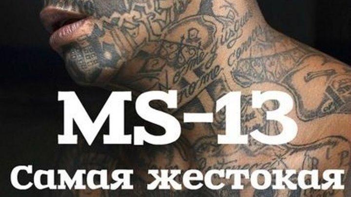 MS-13 Самая жестокая банда в мире