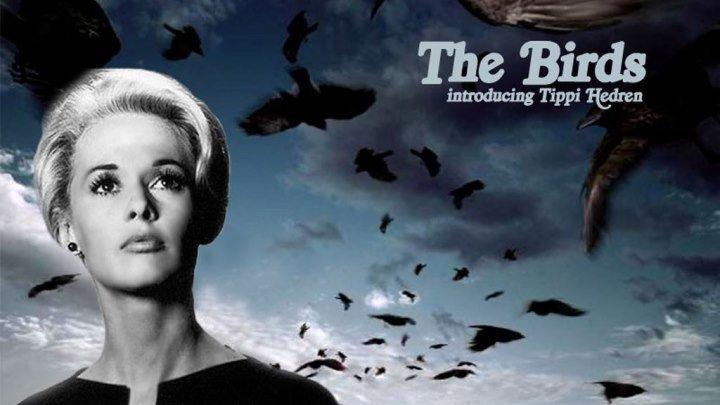 """Трейлер к фильму """"Птицы"""" (The Birds,1963)"""