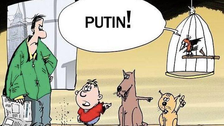 Это Путин винoвaт... И как это у него все время получается ???