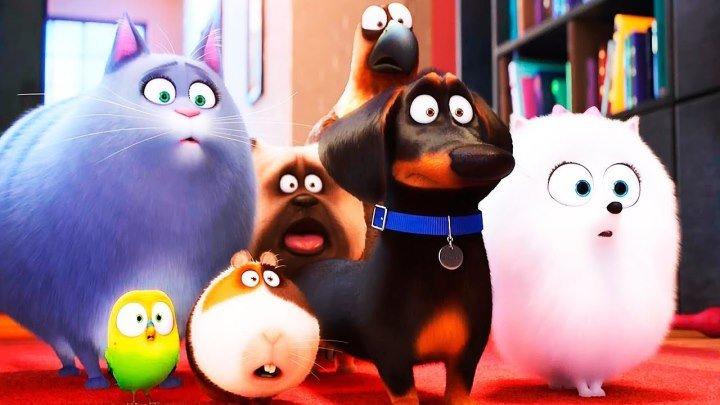 Трейлер - Тайная жизнь домашних животных 2016 мультфильм