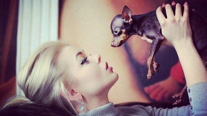Алина Гросу - Собак