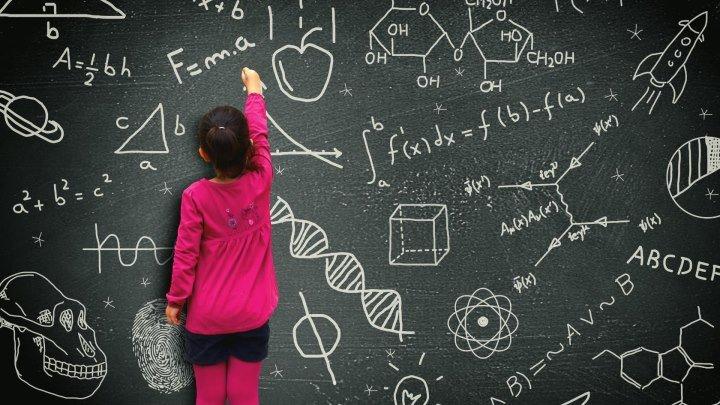 5 принципов правильного воспитания детей