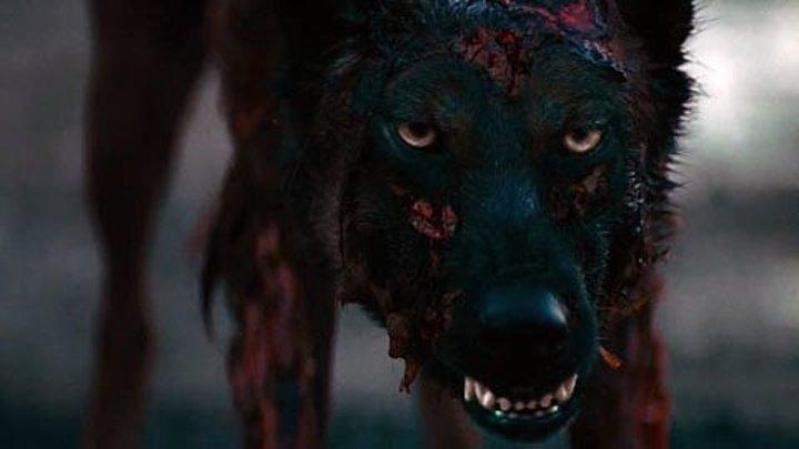 Лихорадка (2016) ужасы