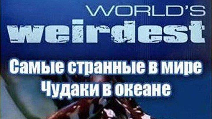 """""""Самые странные в мире. Чудаки в океане"""" 3 серия"""
