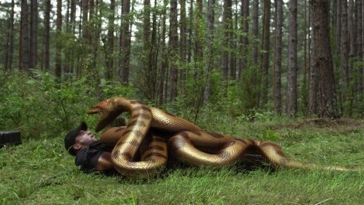 Озеро страха: Анаконда (2015) - HD
