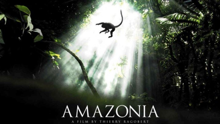 Амазония: Инструкция по выживанию (2013)