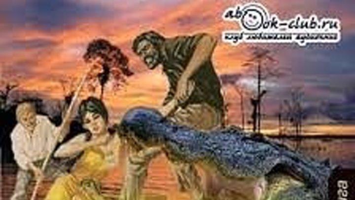Жангада (Восемьсот лье по Амазонке) часть 2 [аудиокнига]