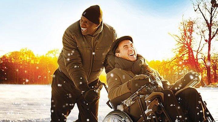 1+1 HD(комедия)2012