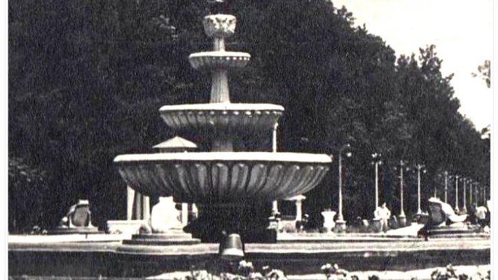 Мелитополь. Парк из прошлого (по материалам архива ТГАТУ). BIS-2016.
