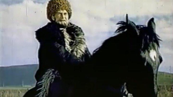 Чегери 1980г. (фильм)