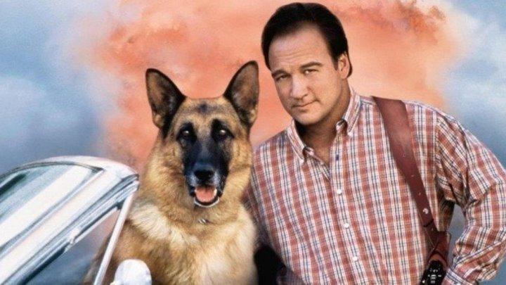 К-911: Собачья работа 2 (криминальная комедия с Джеймсом Белуши) | США, 1999