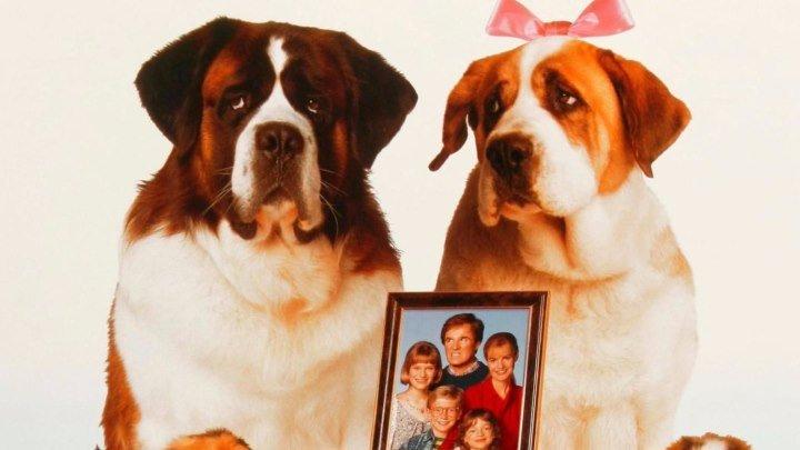 Бетховен 2 (семейная комедия) | США, 1993