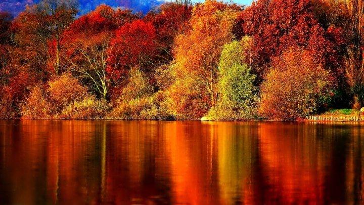 Осенний блюз. – Золотой саксофон / Autumn Blues. – Golden Saxophone • ☛ ЭКЗ◎ТИКА ☚