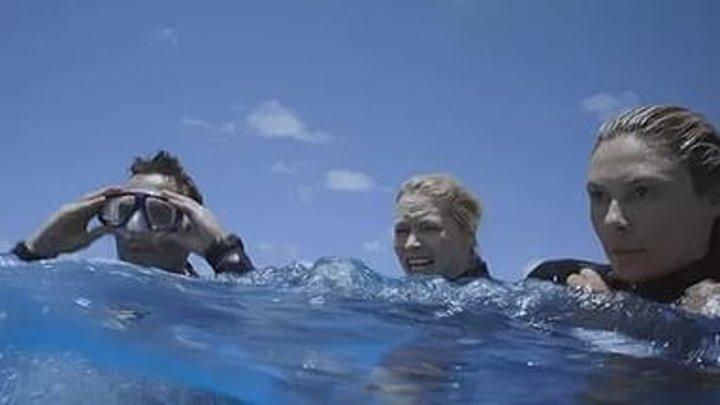 «Открытое море 3: Новые жертвы» 2010 ужасы, триллер