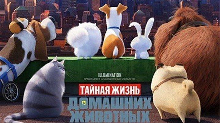 Жанр_ мультфильм, комедия, семейный
