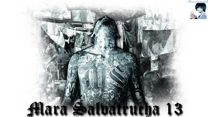 MS-13 (Mara Salvatrucha) (Часть 1 из 2)