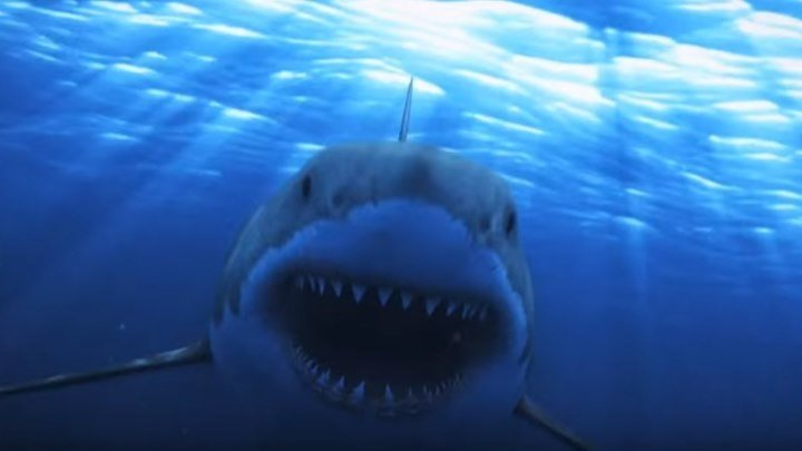 Акулы на свободе / Sharkansas Women's Prison Massacre (2016)