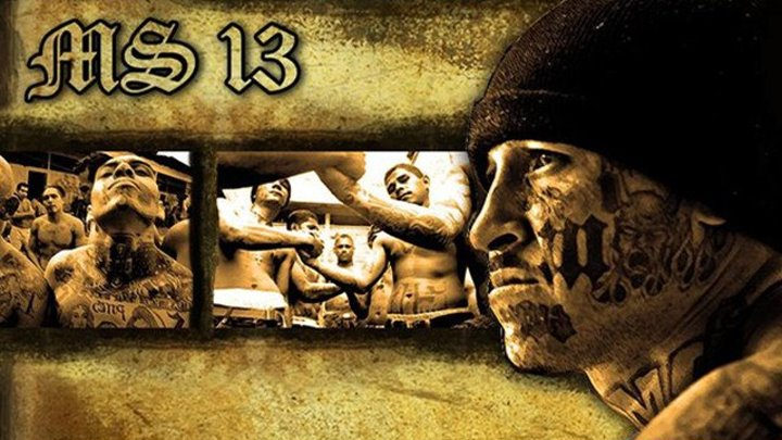 MS-13 (Mara Salvatrucha) (Часть 2 из 2)