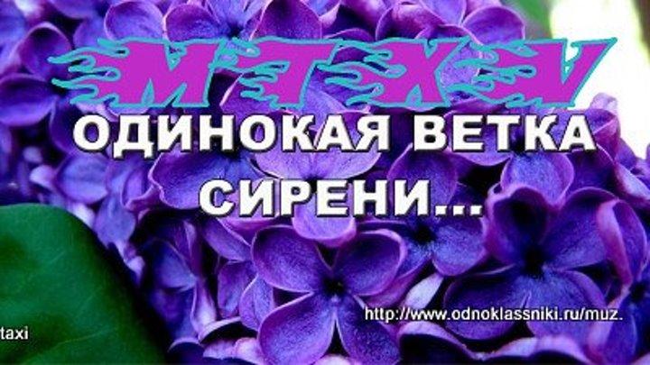MTXV ХИТ В. Залкин - Одинокая ветка сирени (2016) ПРЕМЬЕРА