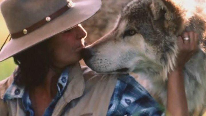 Жизнь с волками документалка