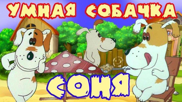 умная собачка Соня 2 серия